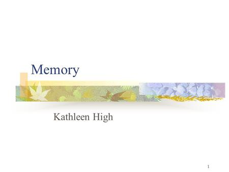 1 Memory Kathleen High. 2 Memory as a Jungle One entrance = A small meadow Millions of animals pass through.