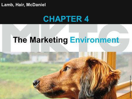 Chapter 4 Copyright ©2012 by Cengage Learning Inc. All rights reserved 1 Lamb, Hair, McDaniel CHAPTER 4 The Marketing Environment © Mark Herreid/Shutterstock.com.