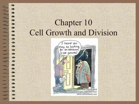 Chapter 10 Cell Growth and Division. Cell Growth Key factors of cell size –Surface area – area around the cell (plasma membrane) –Volume – space inside.