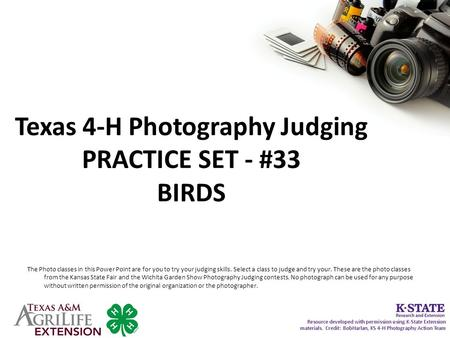 Texas 4-H Photography Judging PRACTICE SET - #33 BIRDS The Photo classes in this Power Point are for you to try your judging skills. Select a class to.