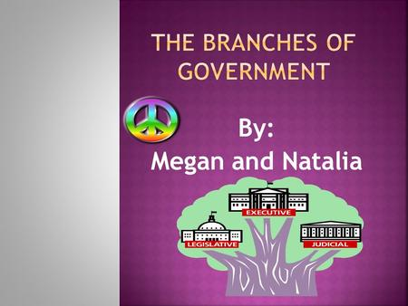 By: Megan and Natalia.  The person that runs the executive branch is the president  The job of the executive branch is to make sure that laws are carried.
