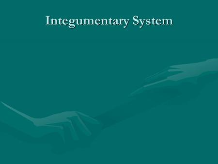 Integumentary System. Integumentary system A barrier against infection and injury, helps regulate body temperature, removes wastes, provides protection.