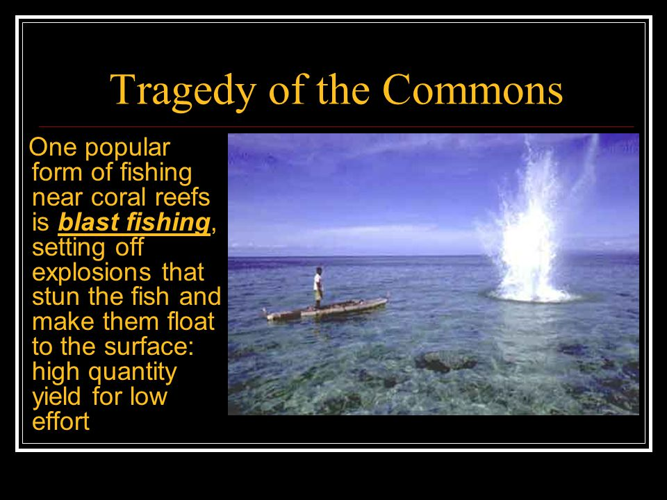 Tragedy of the Commons But blast fishing destroys the coral reefs, thus yielding high returns in the short run but lower returns in the long run Does this mean blast fishers are short- sighted?
