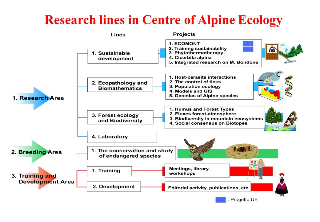 Research lines in Centre of Alpine Ecology
