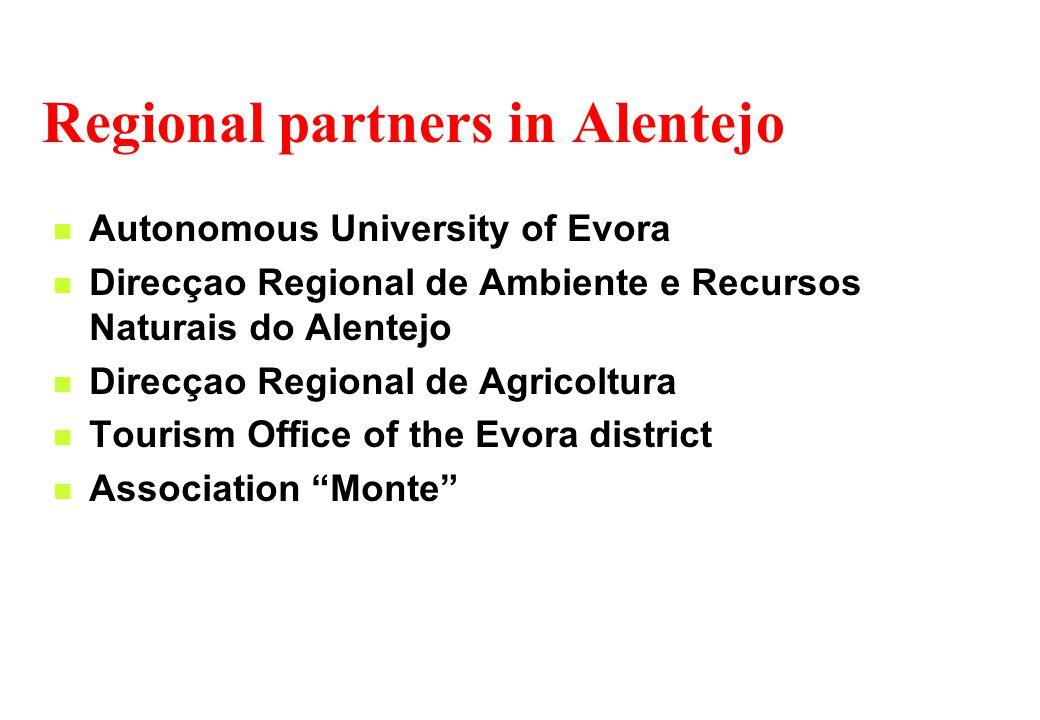 Regional partners in Alentejo Autonomous University of Evora Direcçao Regional de Ambiente e Recursos Naturais do Alentejo Direcçao Regional de Agricoltura Tourism Office of the Evora district Association Monte