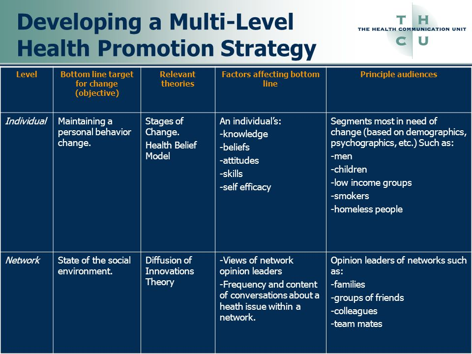 Developing a Multi-Level Health Promotion Strategy (2) LevelBottom line target for change (objective) Relevant theories Factors affecting bottom line Principle audiences OrganizationPolicies.Organizational Theory -cost/benefits to industry.