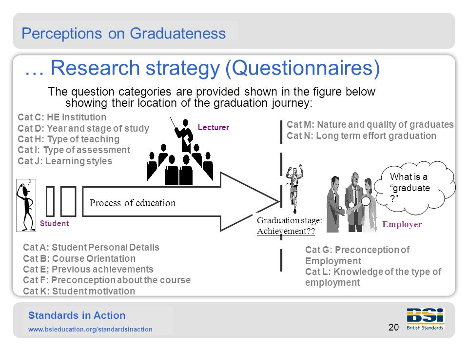 Standards in Action www.bsieducation.org/standardsinaction … Research strategy (Interviews) The interviews were used to investigate the emerging issues emerging from the questionnaires.