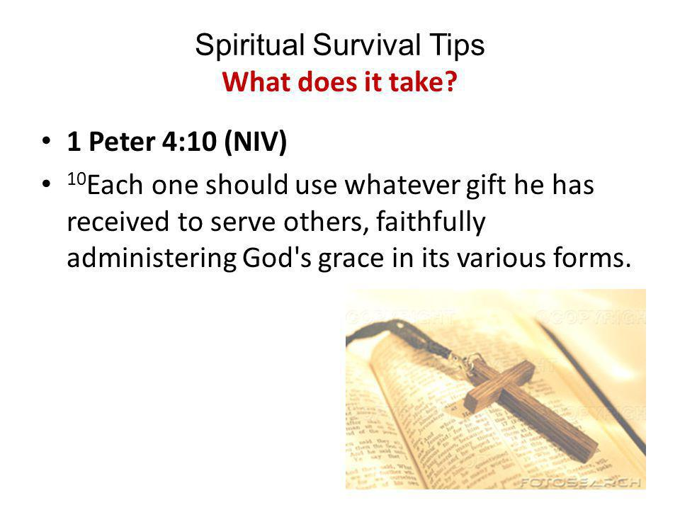 Spiritual Survival Tips What Does it Take to do God's work.