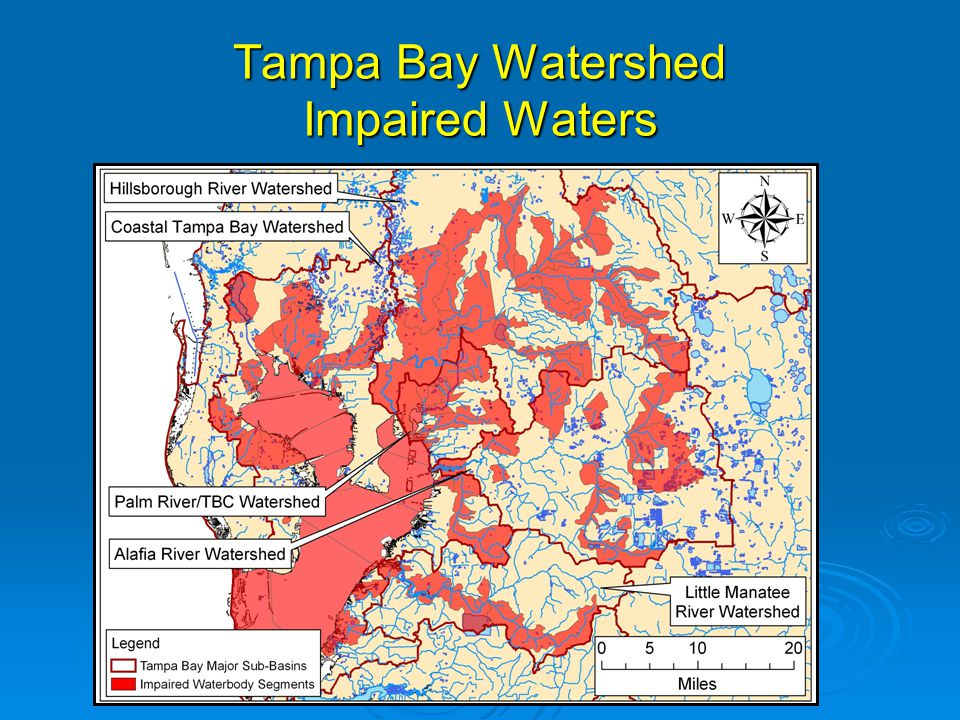Little Manatee River Benthic Habitats  More coarse-grained (sand) sediments and less silt/clay than the other tidal rivers