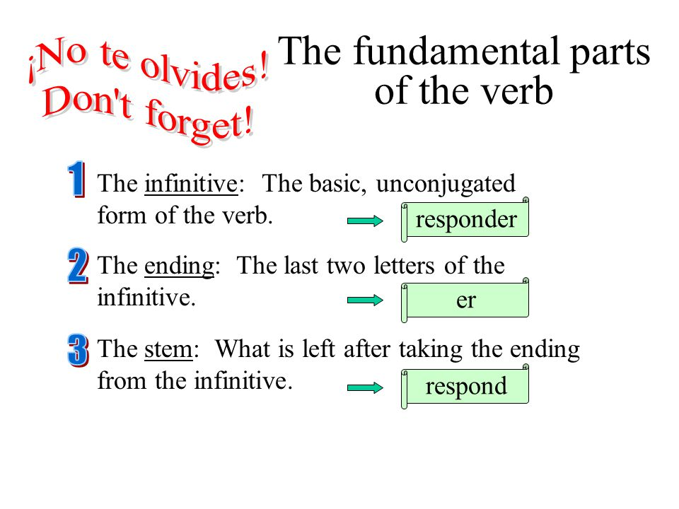 Verbs of the 2 nd conjugation (-er) The following verbs are regular -er verbs and are conjugated according to the pattern in the following three slides.