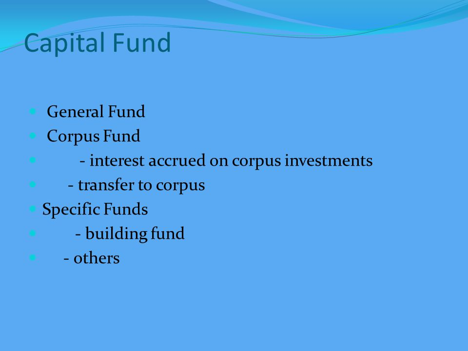 BALANCE SHEET Project Funds (to the extent unutilised) Project balances Carry Forward for specific projects Board Resolutions with Form-10
