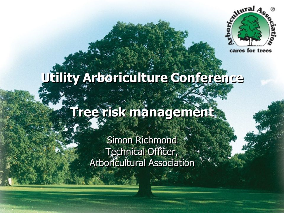 Background History Context Benefit Risk National Tree Safety Group (NTSG) Proportionate, balanced response Power lines Railways