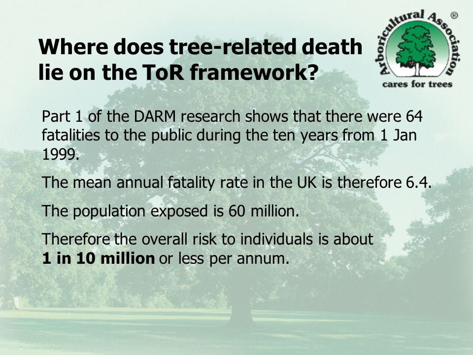 Tree risk in perspective