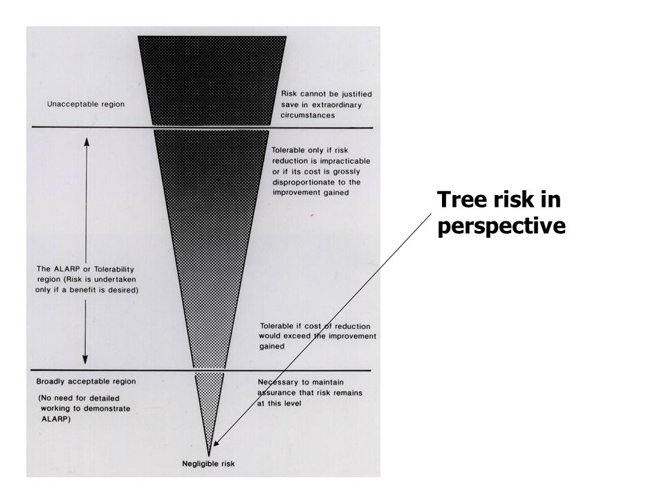 Overall risk v individual risk Of course, some individual trees will pose a higher risk than 1 in 10 million, while others pose a lower risk The trick is to find the very few trees that may cause damage or injury before they find us, by applying sensible risk management Some 'target areas' by their nature, represent a different level of risk