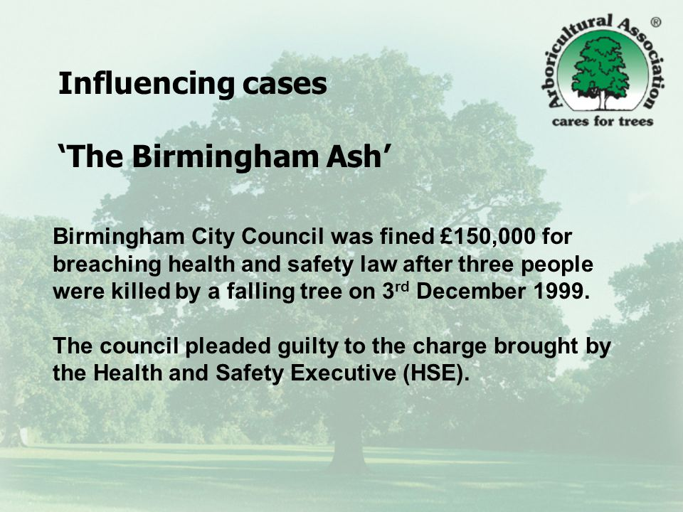The Birmingham Ash Judge Richard Wakerley QC said: The condition and the danger the tree presented would have been obvious to anyone making a close inspection of that tree.