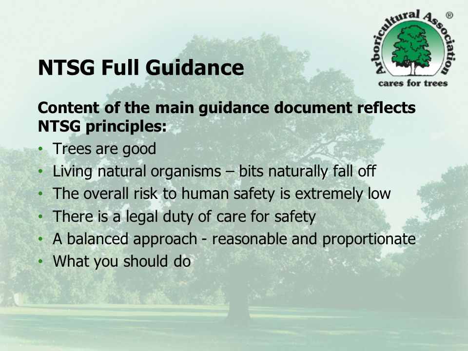 When will the Guidance be available? Possible publication – July / August 2011