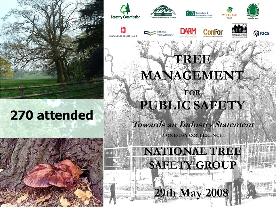 NTSG Management group Chair: Judith Webb, Forestry Commissioner Ancient Tree Forum Arboricultural Association Confederation of Forest Industries Country Land and Business Association (and NFU) Forestry Commission Institute of Chartered Foresters London Tree Officers Association National Trust Royal Institution of Chartered Surveyors Tree Council Woodland Trust Observer: British Standards Institution