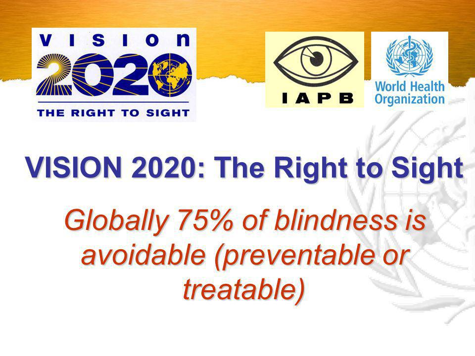 The Global Initiative for the Elimination of Avoidable Blindness WHO The Global Initiative for the Elimination of Avoidable Blindness by 2020 Countries NGDOsIAPB http://www.v2020.org/