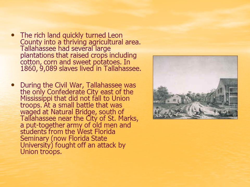 After the Civil War, many of Tallahassee's large plantations were turned into hunting lodges for wealthy winter residents from the North.