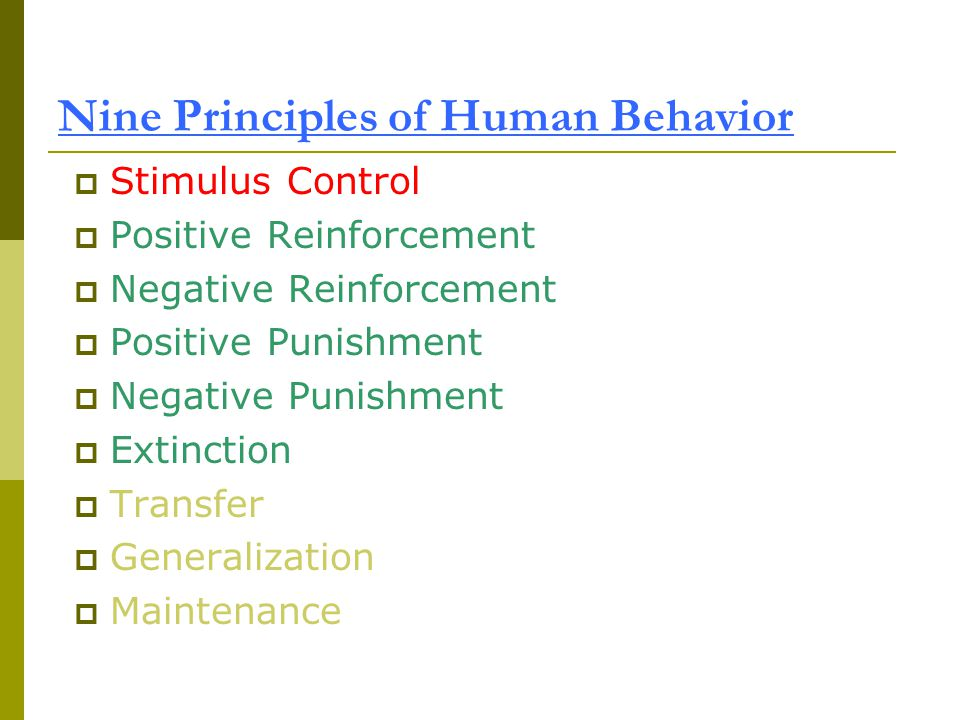 Nine Principles of Human Behavior  Stimulus Control  Positive Reinforcement  Negative Reinforcement  Positive Punishment  Negative Punishment  Extinction  Transfer  Generalization  Maintenance