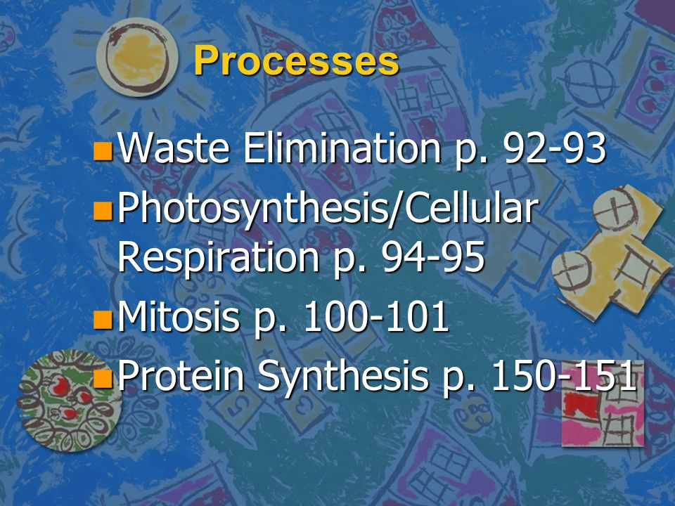 Processes n Waste Elimination p.92-93 n Photosynthesis/Cellular Respiration p.
