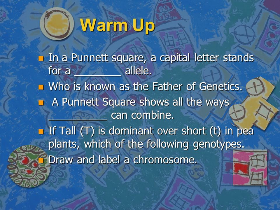 Warm Up n In a Punnett square, a capital letter stands for a ________ allele.