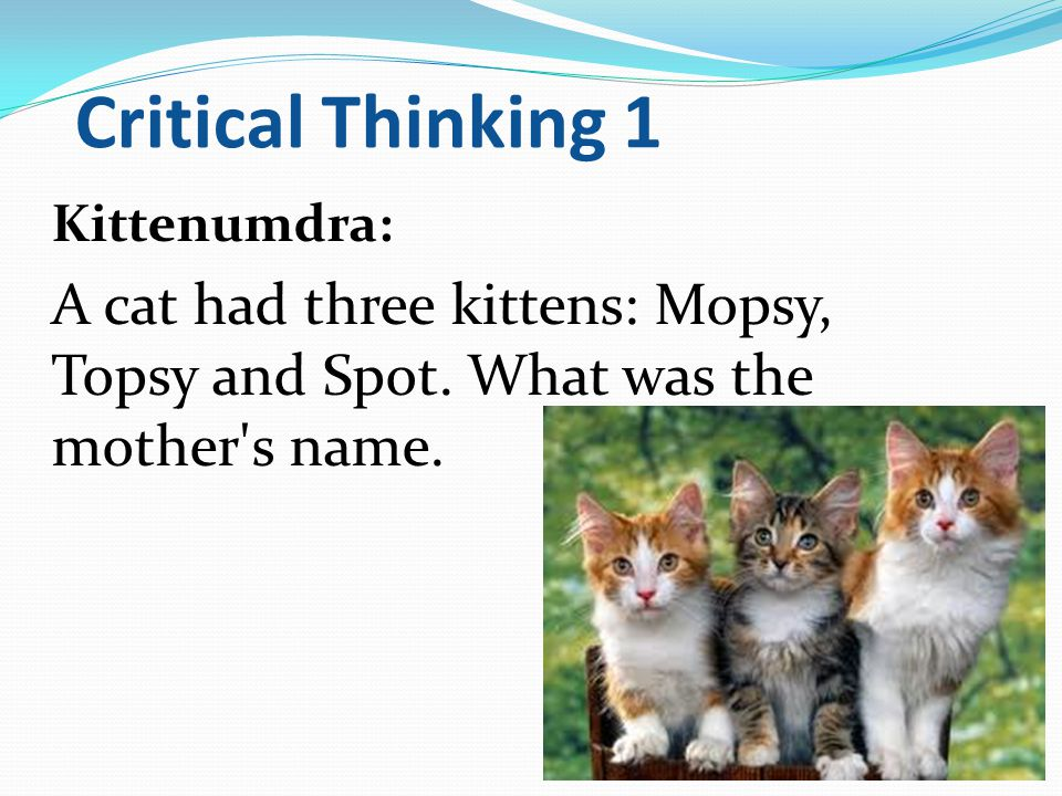 Critical Thinking 1 Kittenumdra: A cat had three kittens: Mopsy, Topsy and Spot.