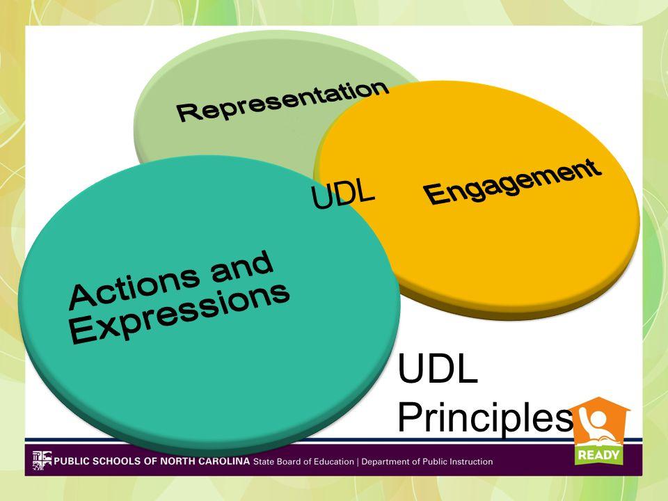 Principal 1: Representation