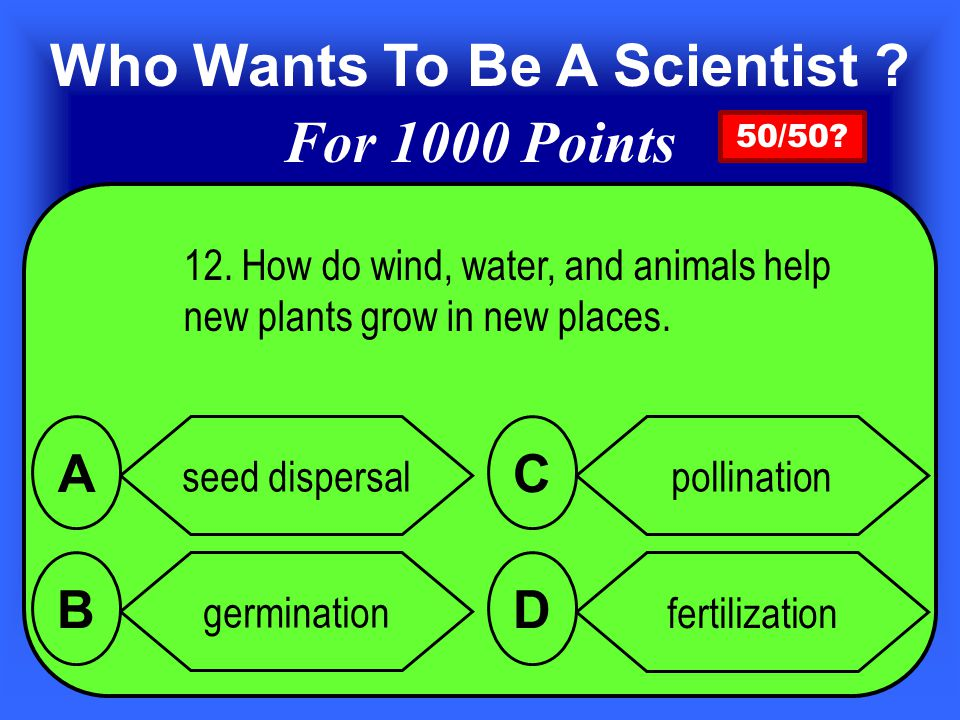 12.How do wind, water, and animals help new plants grow in new places.