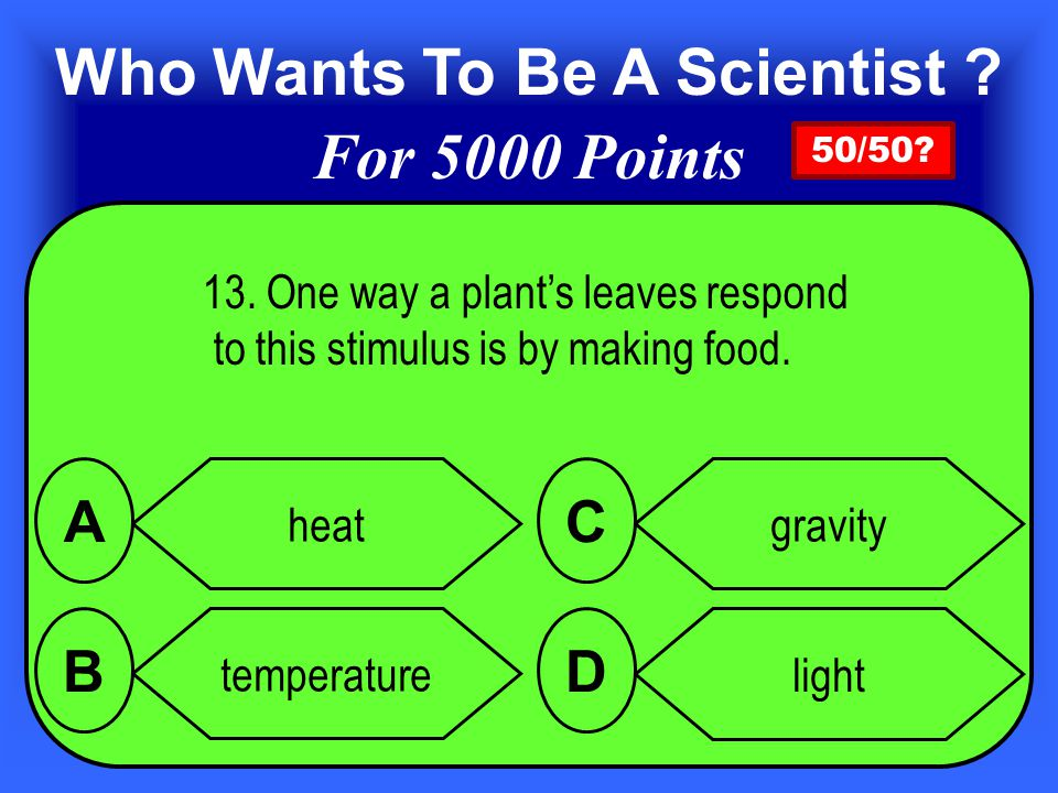 13.One way a plant's leaves respond to this stimulus is by making food.