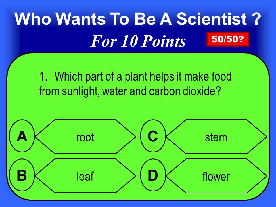 1.Which part of a plant helps it make food from sunlight, water and carbon dioxide.
