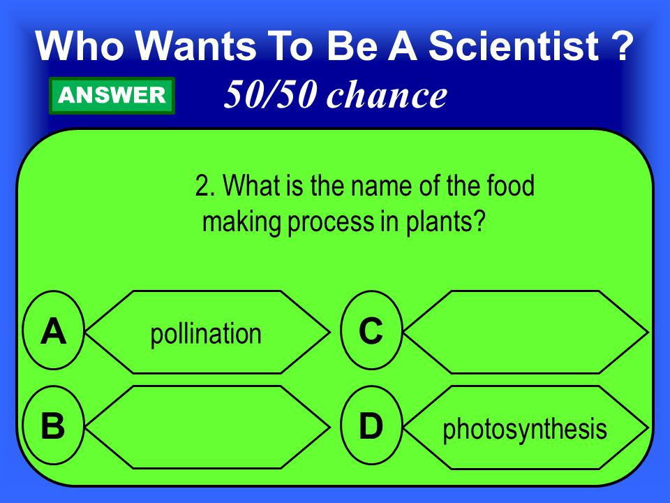 2.What is the name of the food making process in plants.