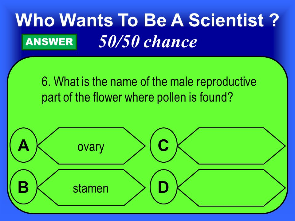 6.What is the name of the male reproductive part of the flower where pollen is found.