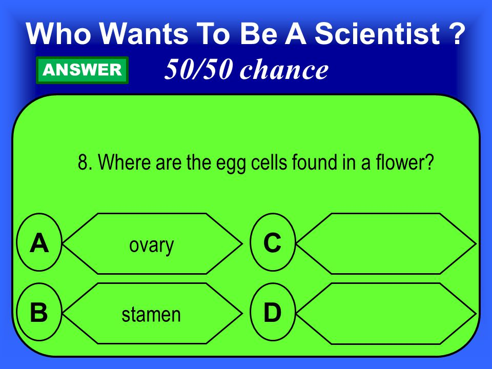 8.Where are the egg cells found in a flower.