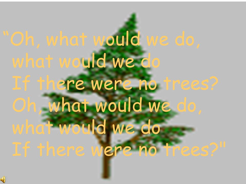 Oh, what would we do, what would we do If there were no trees.