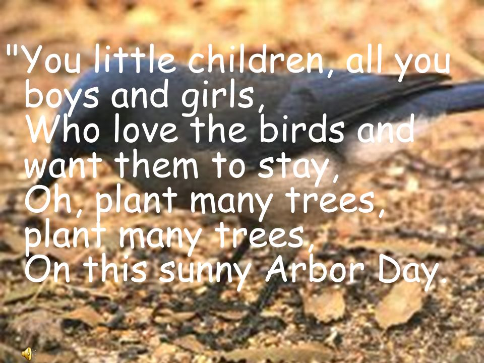 You little children, all you boys and girls, Who love the birds and want them to stay, Oh, plant many trees, plant many trees, On this sunny Arbor Day.
