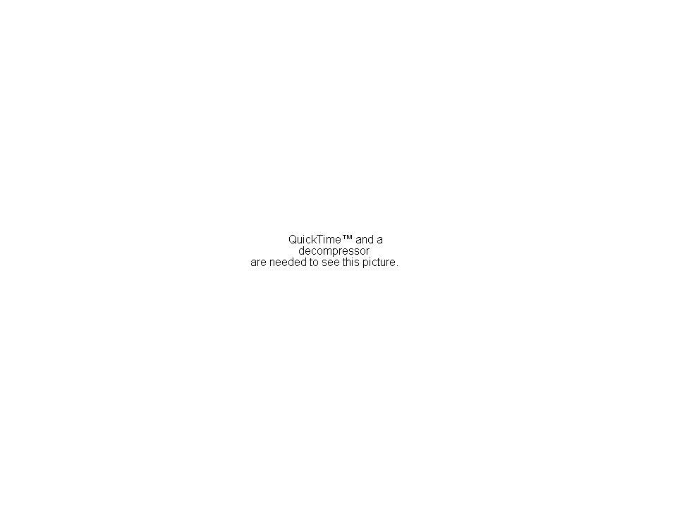 Line Master 3: Multiplicative Relationships (contd)