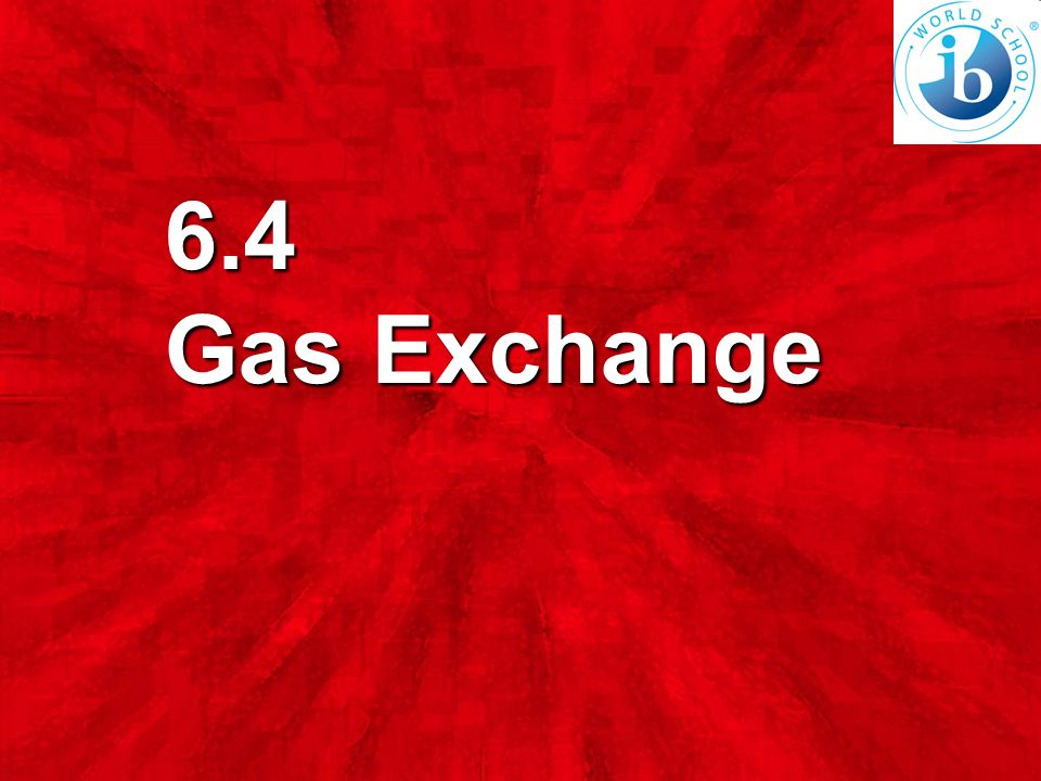 List the characteristics of alveoli that permit efficient gas exchange. (4 marks)