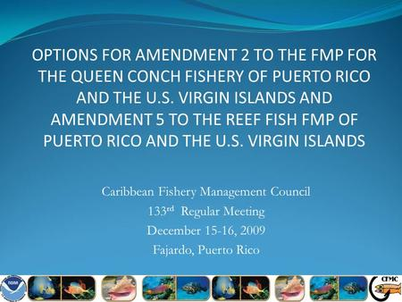 OPTIONS FOR AMENDMENT 2 TO THE FMP FOR THE QUEEN CONCH FISHERY OF PUERTO RICO AND THE U.S. VIRGIN ISLANDS AND AMENDMENT 5 TO THE REEF FISH FMP OF PUERTO.