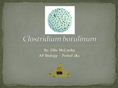By: Ellie McCarthy AP Biology – Period 1&2. Domain: Bacteria Kingdom: Bacteria Division: Firmicutes Class: Clostridia Order: Clostridiales Family: Clostridiaceae.