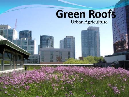 Urban Agriculture. What is a Green Roof Green roofs supplement traditional vegetation without disrupting urban infrastructure -- they take a neglected.