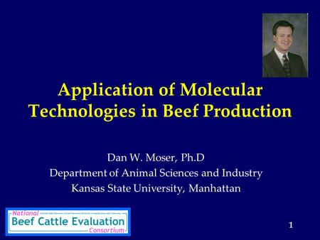1 Application of Molecular Technologies in Beef Production Dan W. Moser, Ph.D Department of Animal Sciences and Industry Kansas State University, Manhattan.