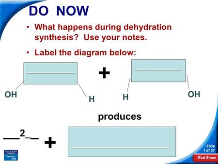 End Show Slide 1 of 37 DO NOW What happens during dehydration synthesis? Use your notes. Label the diagram below: __________ H OH H __________ + _____________________.