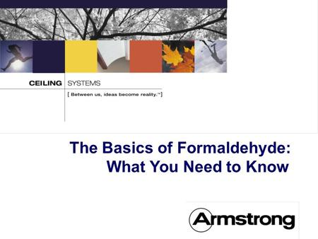 The Basics of Formaldehyde: What You Need to Know.