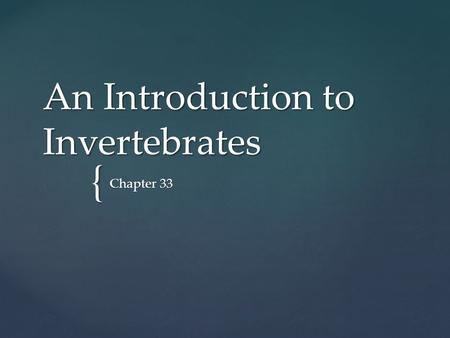 An Introduction to Invertebrates