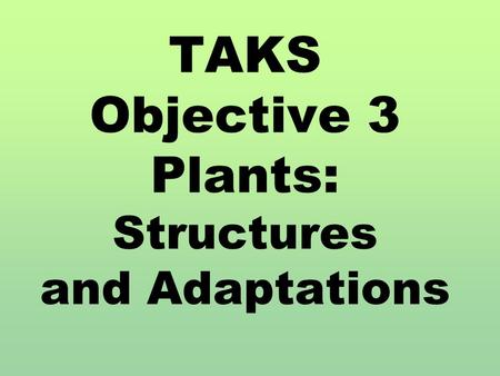 TAKS Objective 3 Plants: Structures and Adaptations.