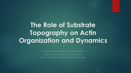 The Role of Substrate Topography on Actin Organization and Dynamics KEVIN BELNAP (BRIGHAM YOUNG UNIVERSITY) MIKE AZATOV (UNIVERSITY OF MARYLAND) ARPITA.