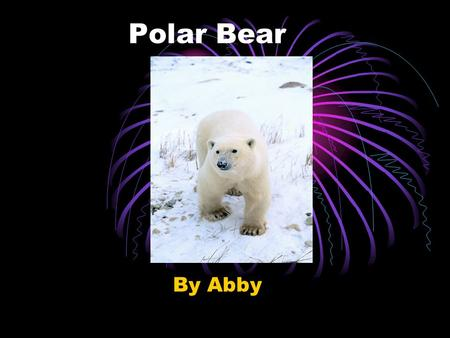 Polar Bear By Abby Mammal Polar bears are mammals because they have hair and they give birth to live babies.