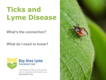 Photograph: Ervic Aquino Ticks and Lyme Disease What's the connection? What do I need to know? Committed to making Lyme disease easy to diagnose and simple.
