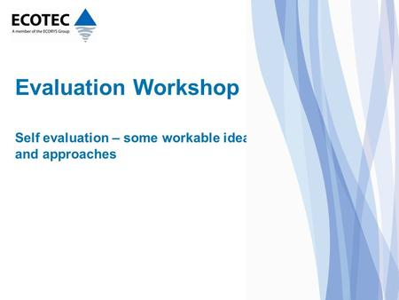 Evaluation Workshop Self evaluation – some workable ideas and approaches.